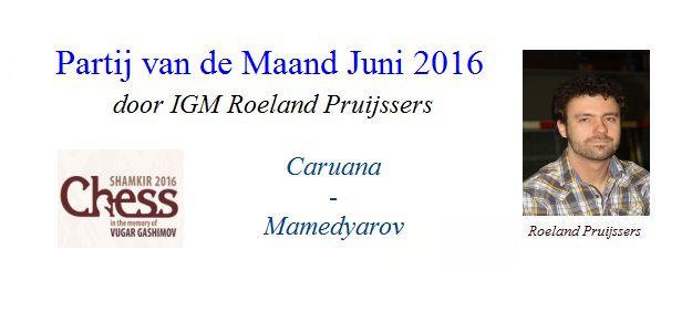 Partij van de Maand Juni 2016 door IGM Roeland Pruijssers